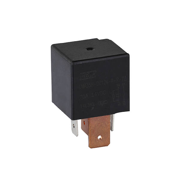 Fast delivery 24v Relay Switch -